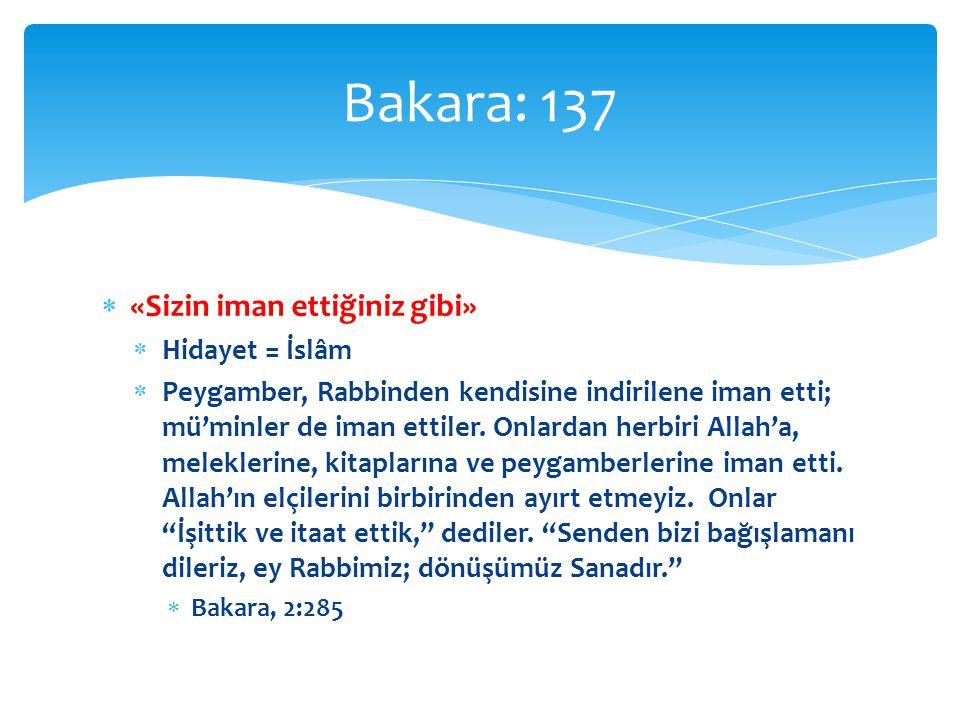  «Allah'ın boyasına…»  Maddî ve manevî boyaların / renklerin tamamı Bakara: 138 | sıbğa