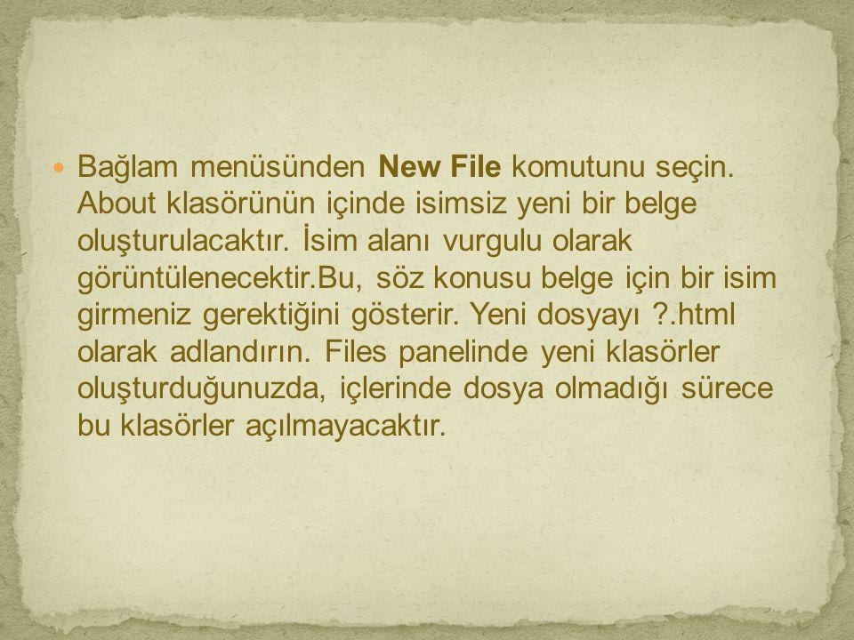  Bağlam menüsünden New File komutunu seçin. About klasörünün içinde isimsiz yeni bir belge oluşturulacaktır. İsim alanı vurgulu olarak görüntülenecek