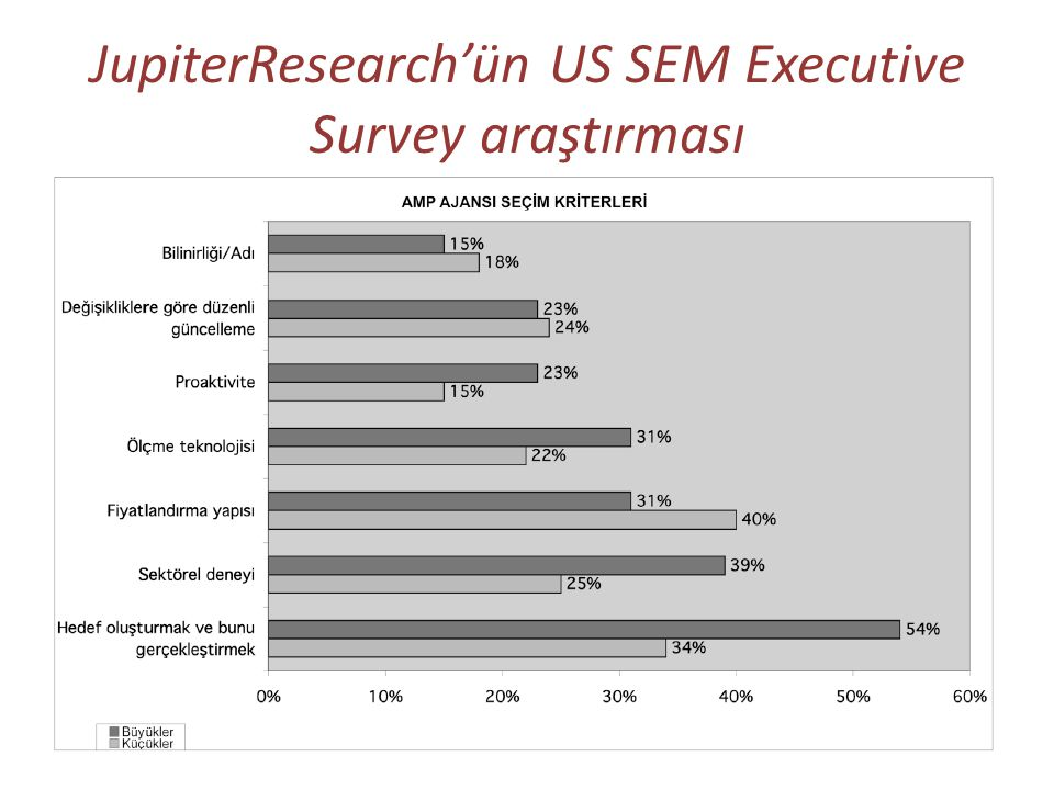 JupiterResearch'ün US SEM Executive Survey araştırması