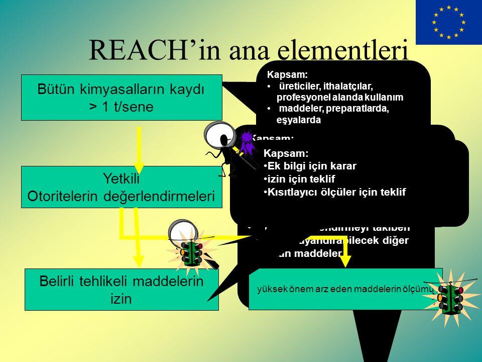 REACH kapsamında izin ve kısıtlamalar
