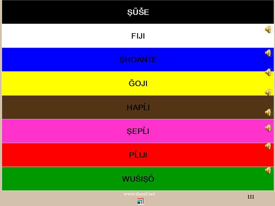 ŞÖXER renkler Renk tonları 110 www.danef.net