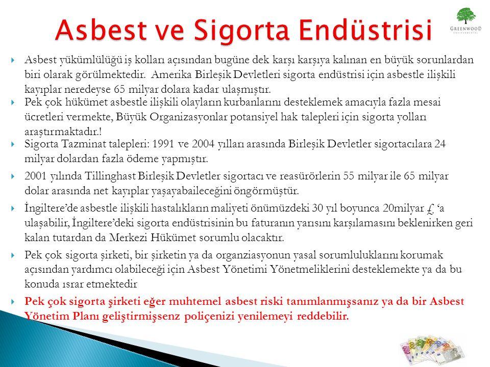  Asbest yükümlülüğü iş kolları açısından bugüne dek karşı karşıya kalınan en büyük sorunlardan biri olarak görülmektedir.
