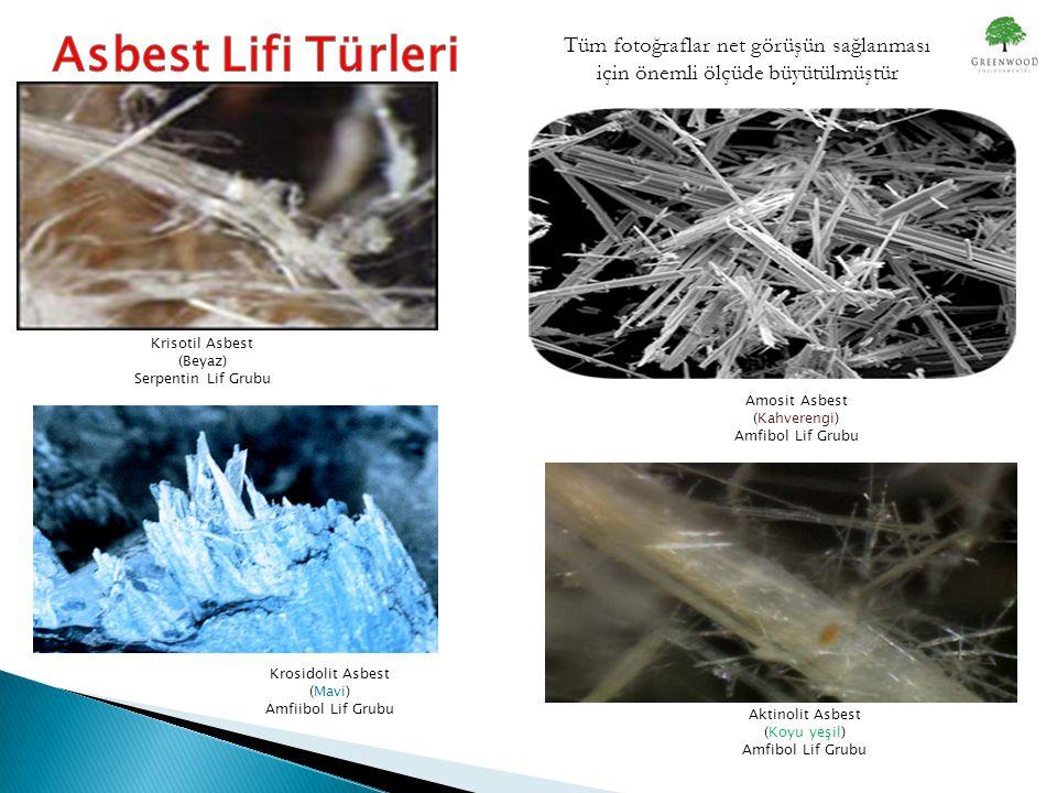 Krisotil Asbest (Beyaz) Serpentin Lif Grubu Amosit Asbest (Kahverengi) Amfibol Lif Grubu Krosidolit Asbest (Mavi) Amfiibol Lif Grubu Aktinolit Asbest