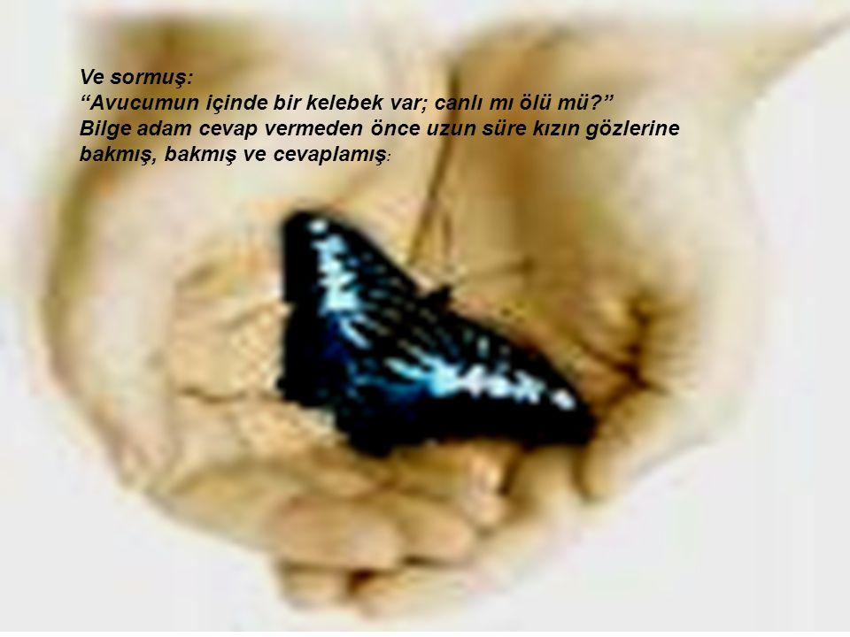 Ve sormuş: Avucumun içinde bir kelebek var; canlı mı ölü mü? Bilge adam cevap vermeden önce uzun süre kızın gözlerine bakmış, bakmış ve cevaplamış :