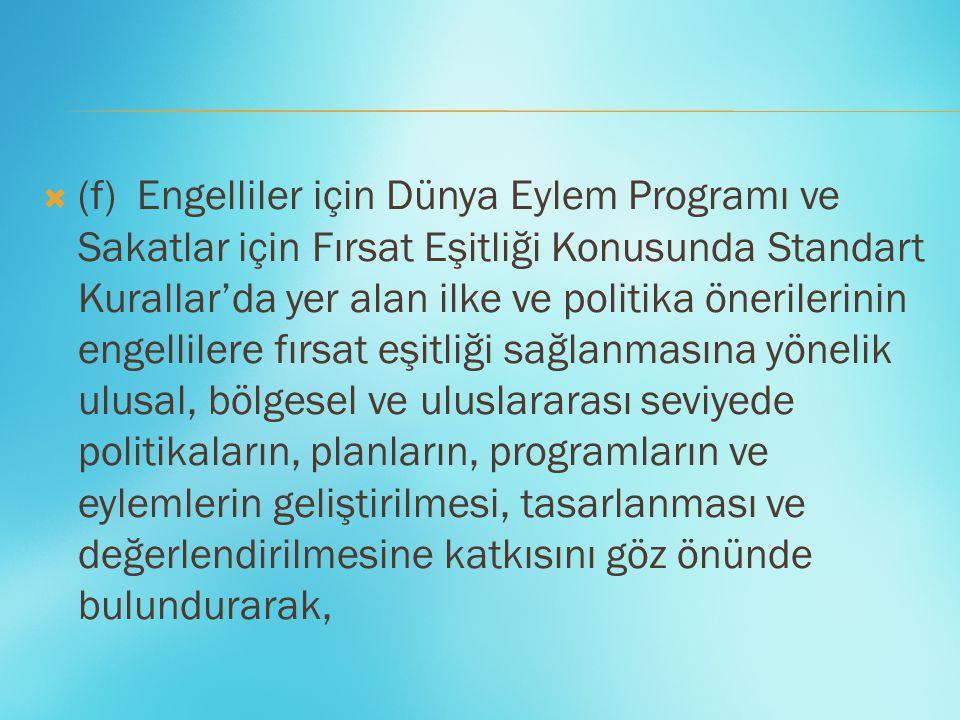  (f) Engelliler için Dünya Eylem Programı ve Sakatlar için Fırsat Eşitliği Konusunda Standart Kurallar'da yer alan ilke ve politika önerilerinin enge