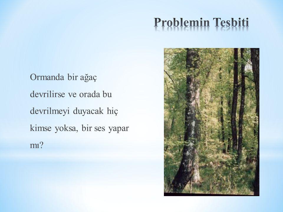 Ormanda bir ağaç devrilirse ve orada bu devrilmeyi duyacak hiç kimse yoksa, bir ses yapar mı?
