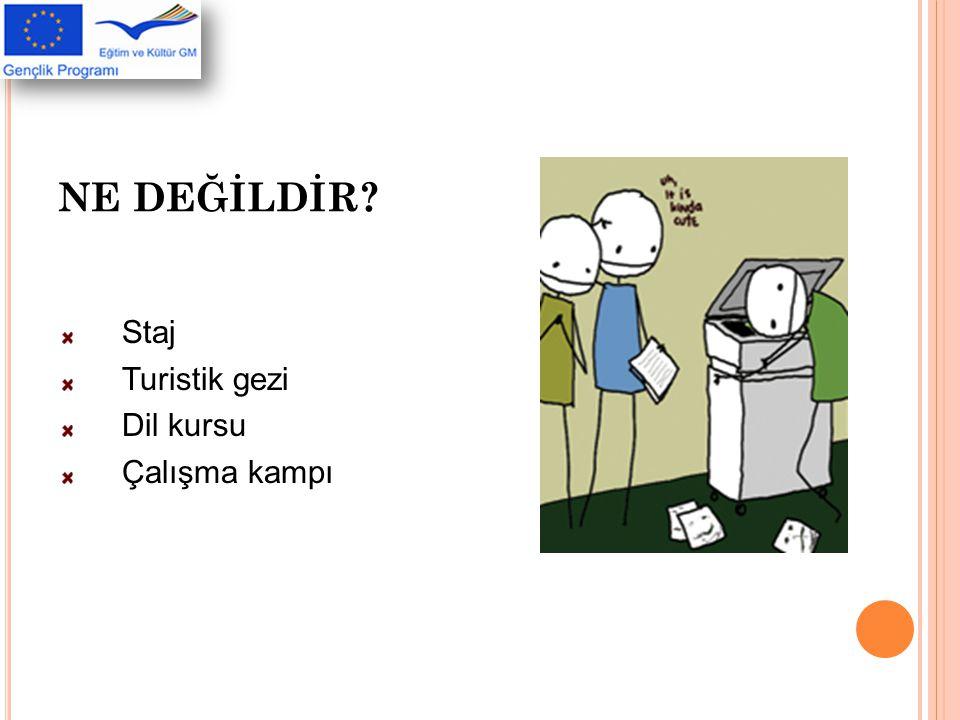 AVRUPA GÖNÜLLÜ HİZMETİ'NE NASIL BAŞVURULUR.
