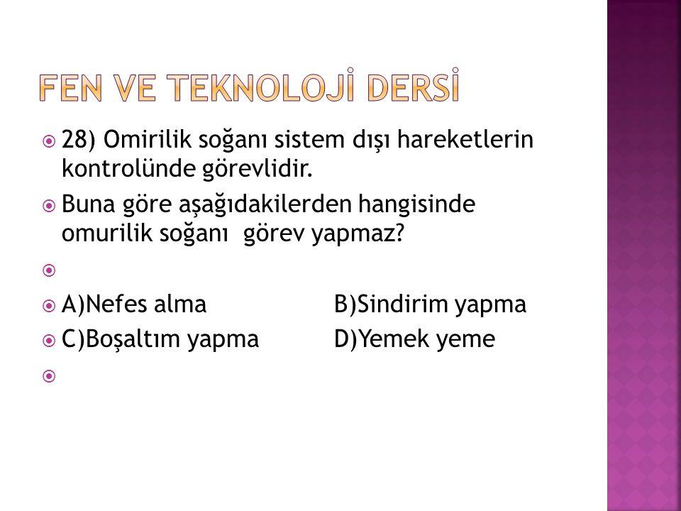  28) Omirilik soğanı sistem dışı hareketlerin kontrolünde görevlidir.  Buna göre aşağıdakilerden hangisinde omurilik soğanı görev yapmaz?   A)Nefe