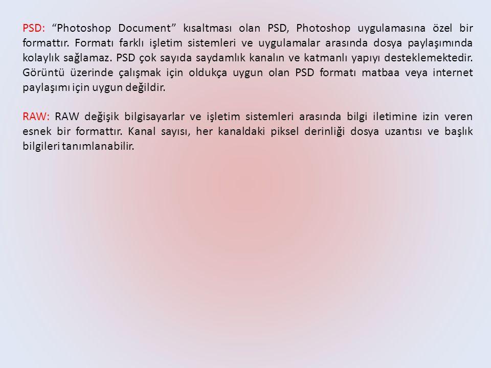 PSD: Photoshop Document kısaltması olan PSD, Photoshop uygulamasına özel bir formattır.