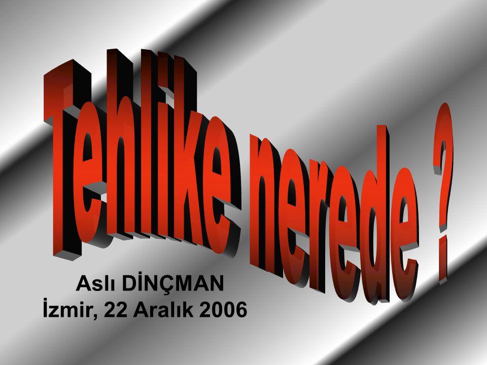 Aslı DİNÇMAN İzmir, 22 Aralık 2006