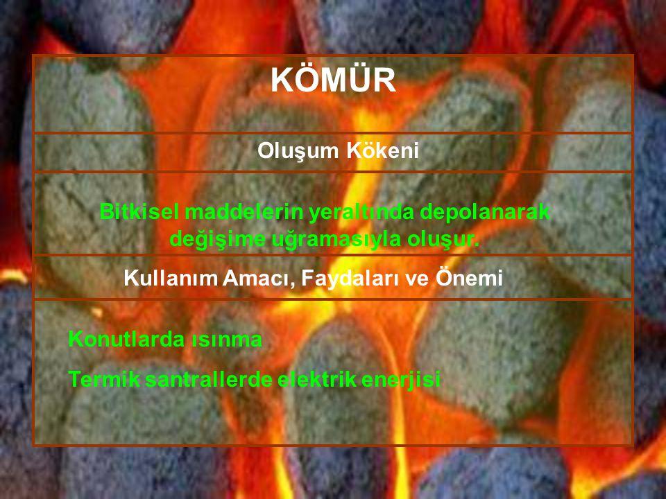 KÖMÜR Oluşum Kökeni Bitkisel maddelerin yeraltında depolanarak değişime uğramasıyla oluşur. Konutlarda ısınma Termik santrallerde elektrik enerjisi Ku