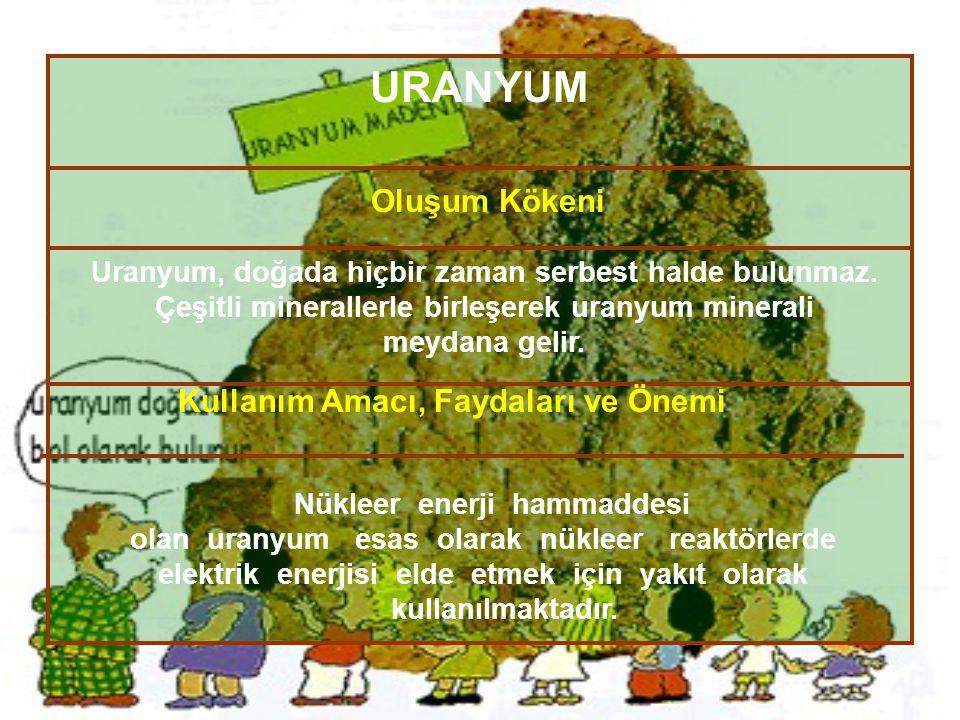 URANYUM Oluşum Kökeni Kullanım Amacı, Faydaları ve Önemi Nükleer enerji hammaddesi olan uranyum esas olarak nükleer reaktörlerde elektrik enerjisi eld