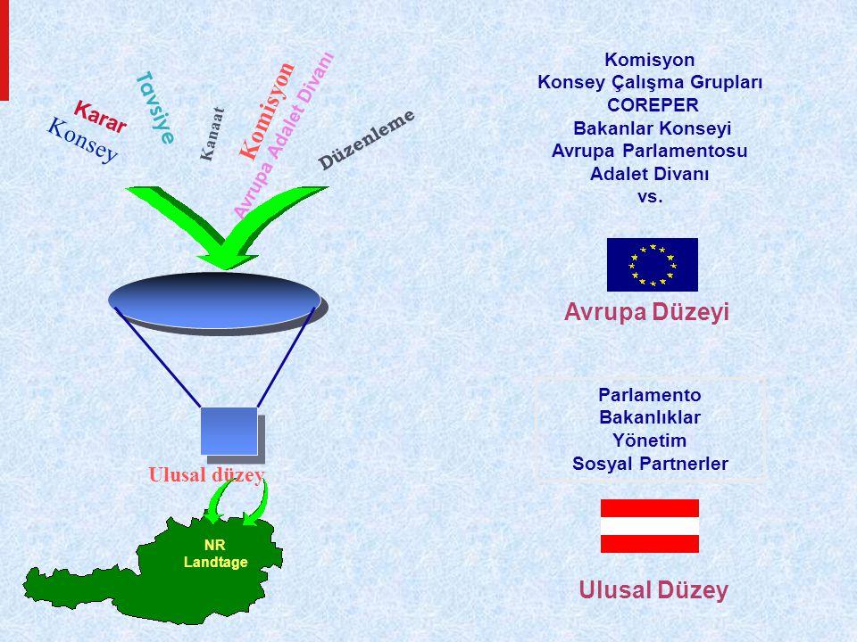 Ulusal düzey Komisyon Konsey Çalışma Grupları COREPER Bakanlar Konseyi Avrupa Parlamentosu Adalet Divanı vs.