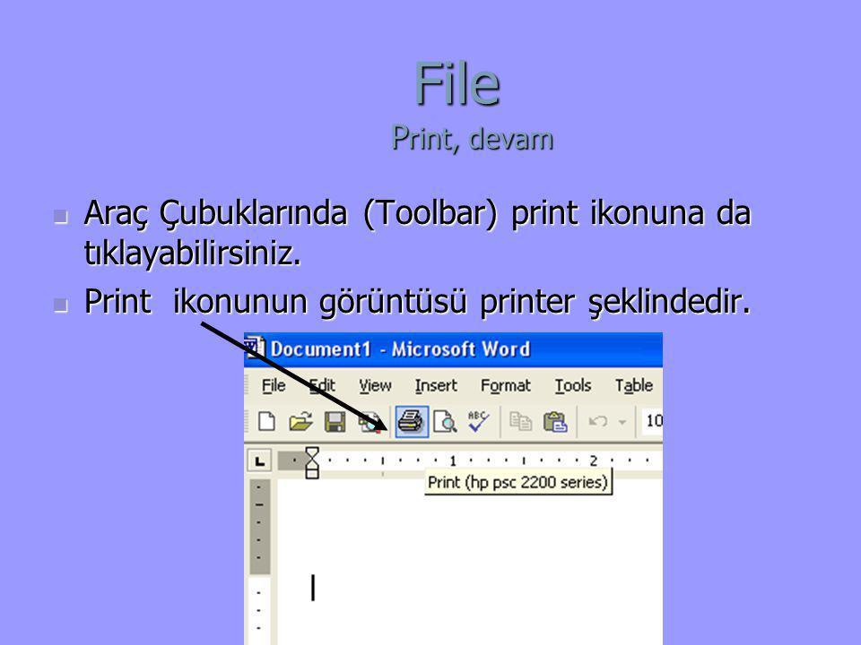  Araç Çubuklarında (Toolbar) print ikonuna da tıklayabilirsiniz.  Print ikonunun görüntüsü printer şeklindedir. File P rint, devam