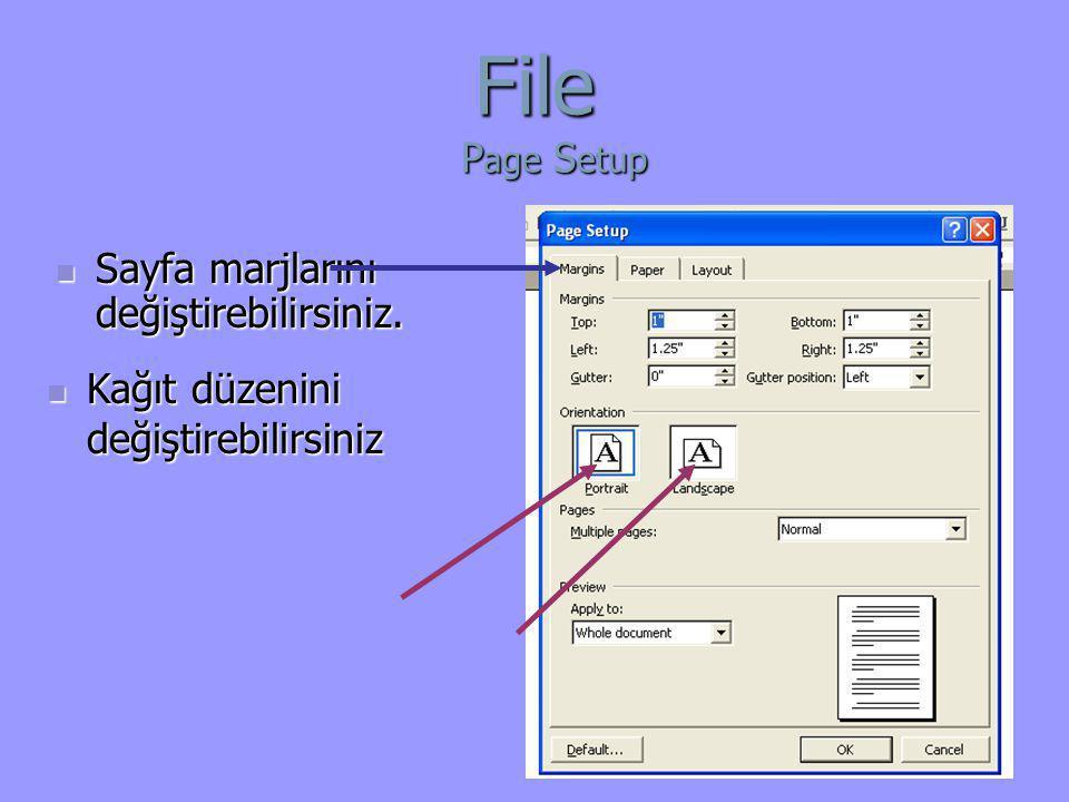  Sayfa marjlarını değiştirebilirsiniz. File P age S etup  Kağıt düzenini değiştirebilirsiniz