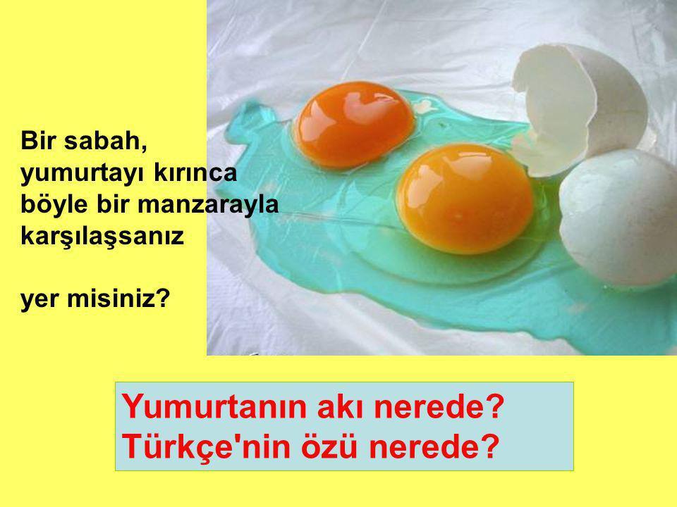 Yumurtanın akı nerede.Türkçe nin özü nerede.