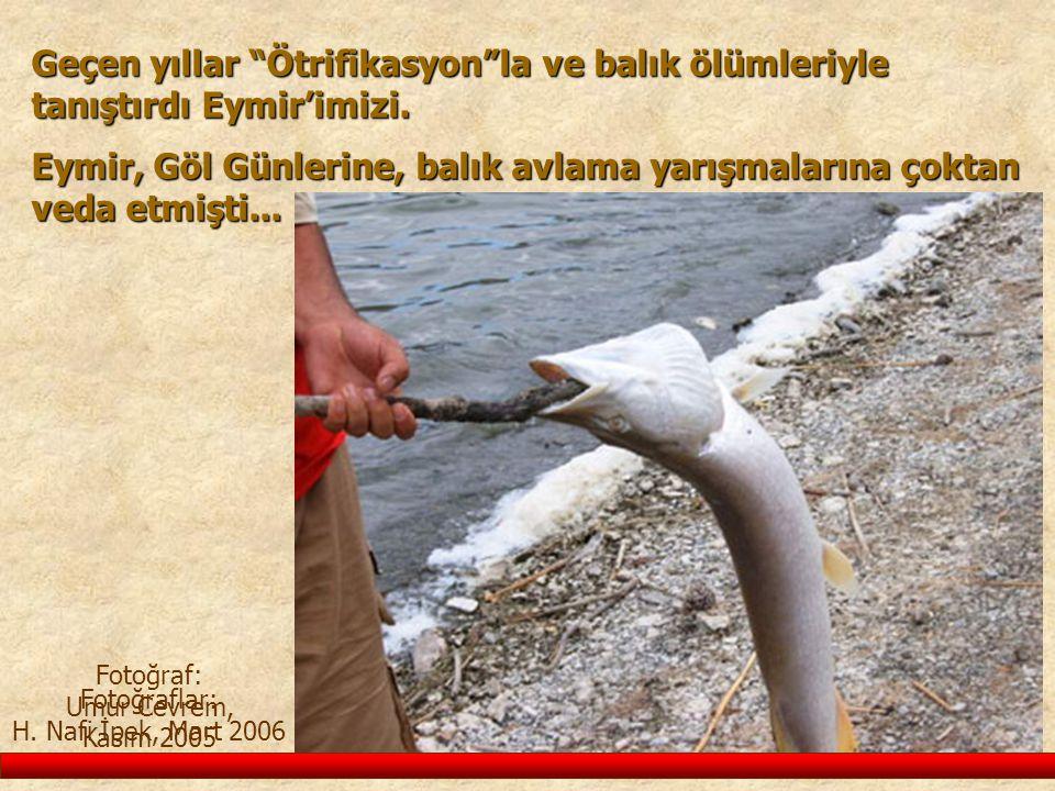 """Geçen yıllar """"Ötrifikasyon""""la ve balık ölümleriyle tanıştırdı Eymir'imizi. Fotoğraflar: H. Nafi İpek, Mart 2006 Fotoğraf: Umur Cevrem, Kasım 2005 Eymi"""