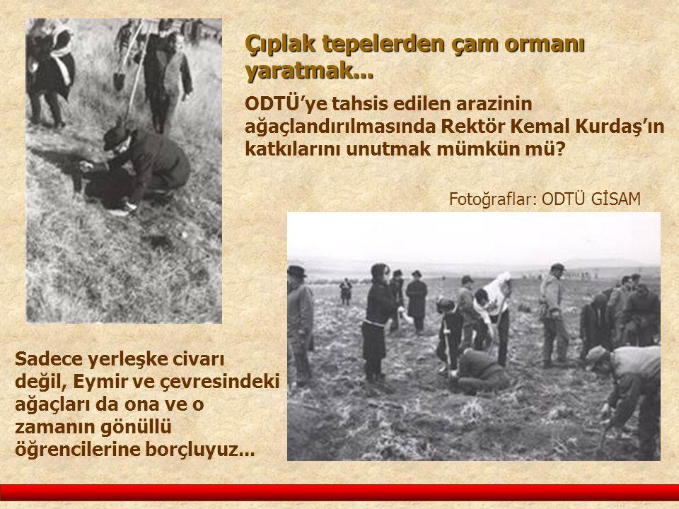 Çıplak tepelerden çam ormanı yaratmak... ODTÜ'ye tahsis edilen arazinin ağaçlandırılmasında Rektör Kemal Kurdaş'ın katkılarını unutmak mümkün mü? Foto
