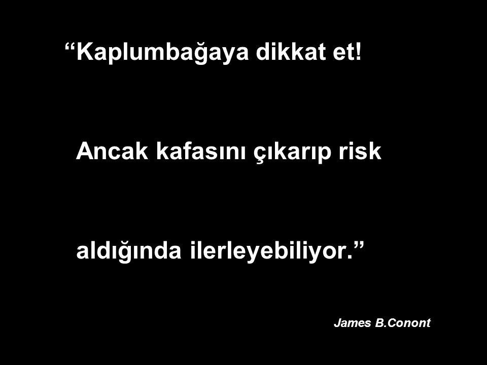 """""""Kaplumbağaya dikkat et! Ancak kafasını çıkarıp risk aldığında ilerleyebiliyor."""" James B.Conont"""