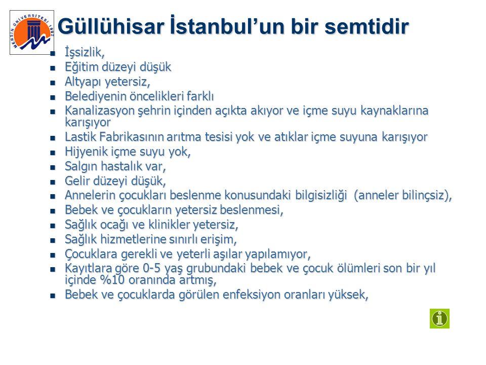 Güllühisar İstanbul'un bir semtidir  İşsizlik,  Eğitim düzeyi düşük  Altyapı yetersiz,  Belediyenin öncelikleri farklı  Kanalizasyon şehrin içind