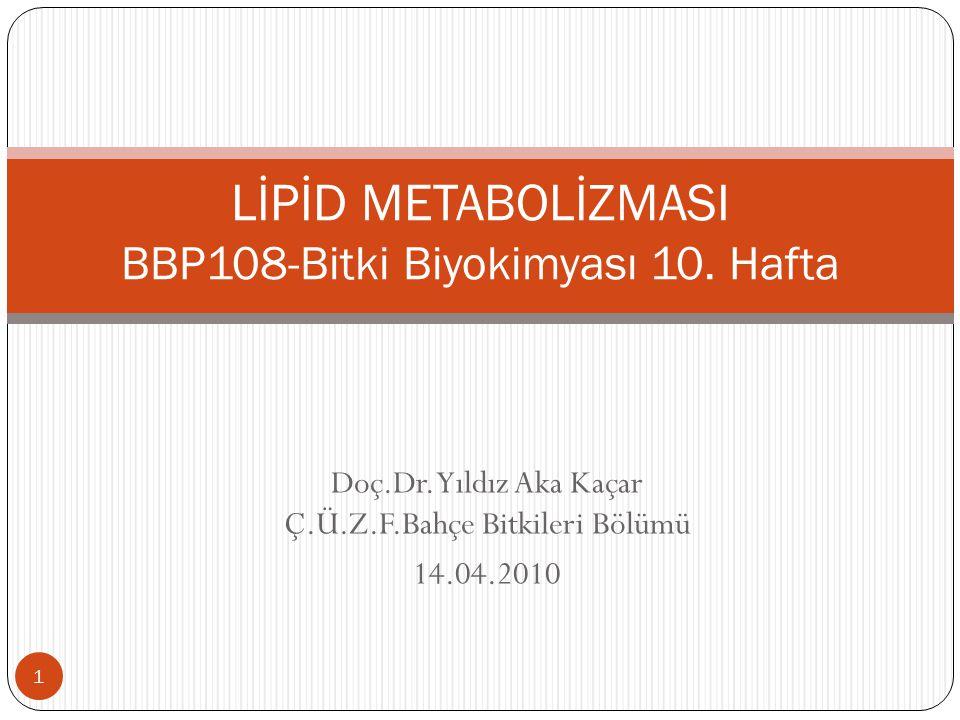 Lipidlerin Sukroza dönüştürülmesi  Ya ğ içeren tohumlarda lipidlerin sukroza dönü ş türülmesi çimlenme ile ba ş lar.
