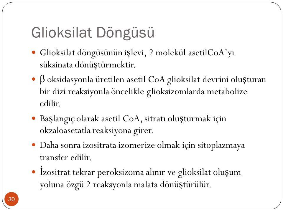 Glioksilat Döngüsü  Glioksilat döngüsünün i ş levi, 2 molekül asetilCoA'yı süksinata dönü ş türmektir.  β oksidasyonla üretilen asetil CoA glioksila