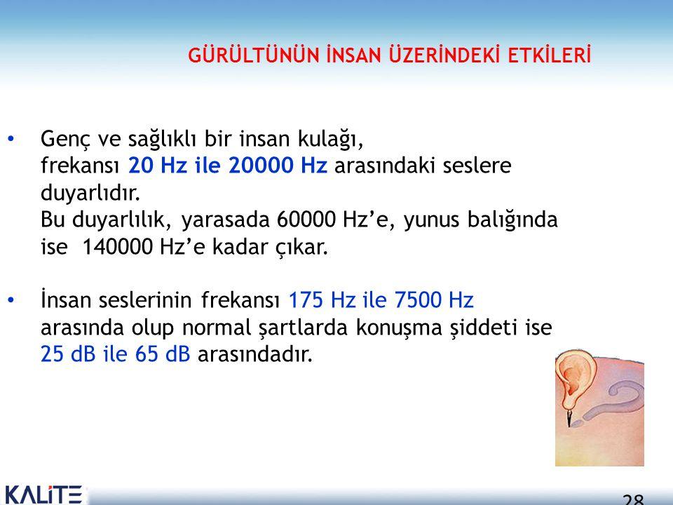 28 • Genç ve sağlıklı bir insan kulağı, frekansı 20 Hz ile 20000 Hz arasındaki seslere duyarlıdır. Bu duyarlılık, yarasada 60000 Hz'e, yunus balığında