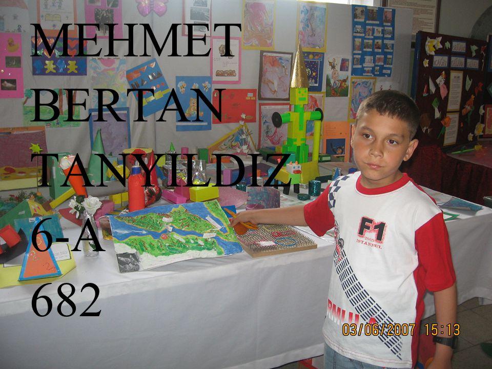 MEHMET BERTAN TANYILDIZ 6-A 682