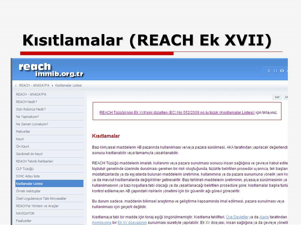 Kısıtlamalar (REACH Ek XVII)