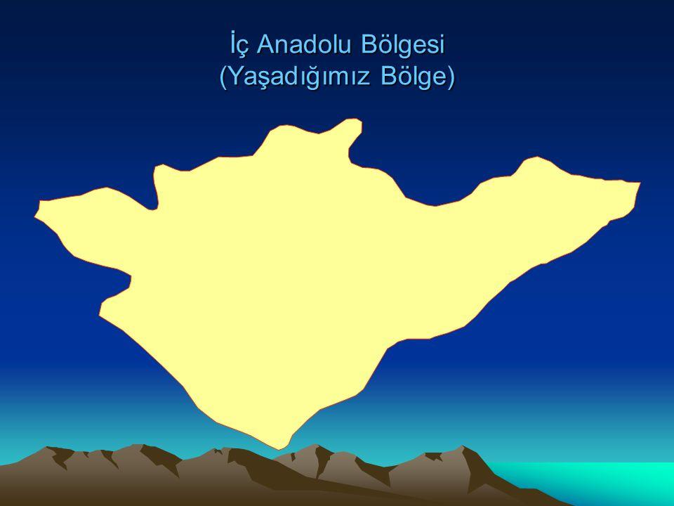 İç Anadolu Bölgesi (Yaşadığımız Bölge)