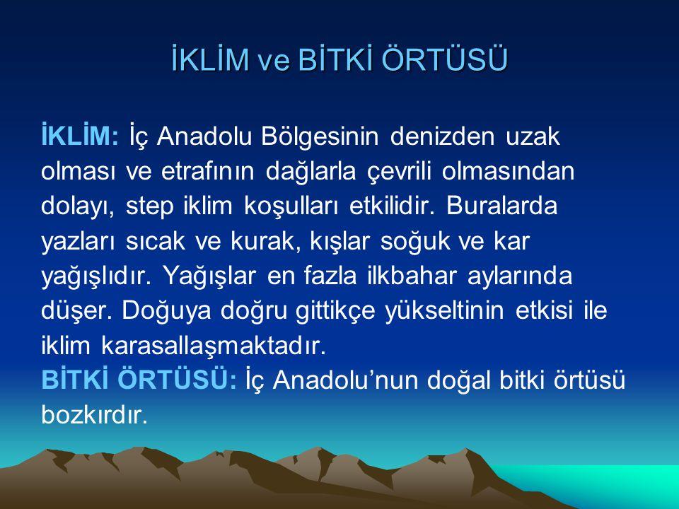 İKLİM ve BİTKİ ÖRTÜSÜ İKLİM: İç Anadolu Bölgesinin denizden uzak olması ve etrafının dağlarla çevrili olmasından dolayı, step iklim koşulları etkilidi