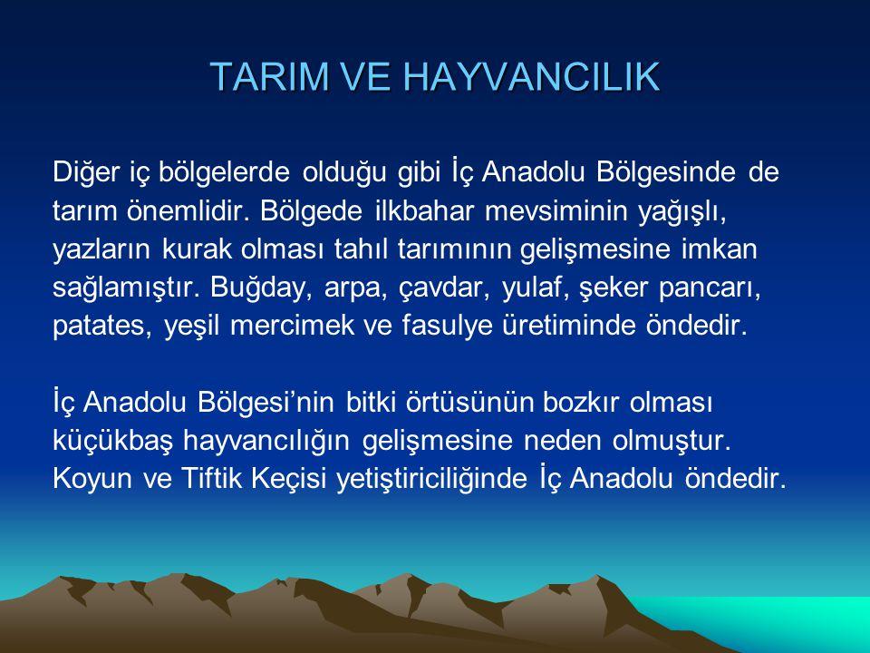 TARIM VE HAYVANCILIK Diğer iç bölgelerde olduğu gibi İç Anadolu Bölgesinde de tarım önemlidir. Bölgede ilkbahar mevsiminin yağışlı, yazların kurak olm