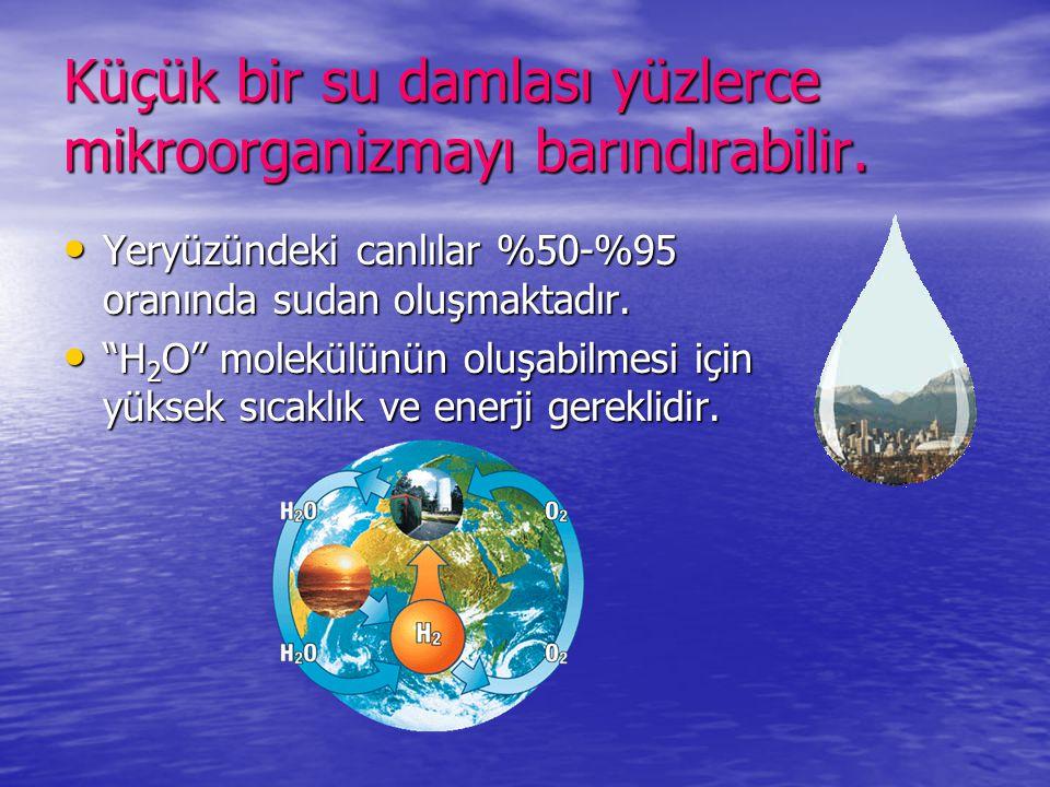 """Küçük bir su damlası yüzlerce mikroorganizmayı barındırabilir. • Yeryüzündeki canlılar %50-%95 oranında sudan oluşmaktadır. • """"H 2 O"""" molekülünün oluş"""
