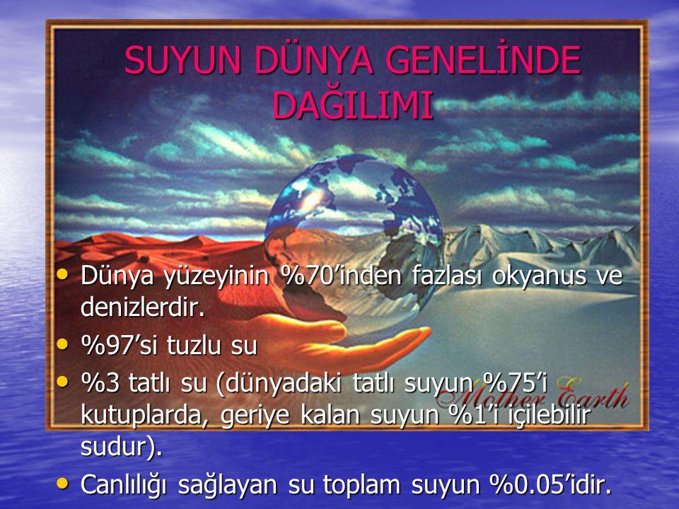 Türkiye iklim sınıflandırmasına göre yarı kurak bir bölgededir.
