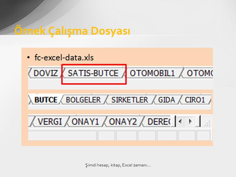 Örnek Çalışma Dosyası Şimdi hesap, kitap, Excel zamanı…