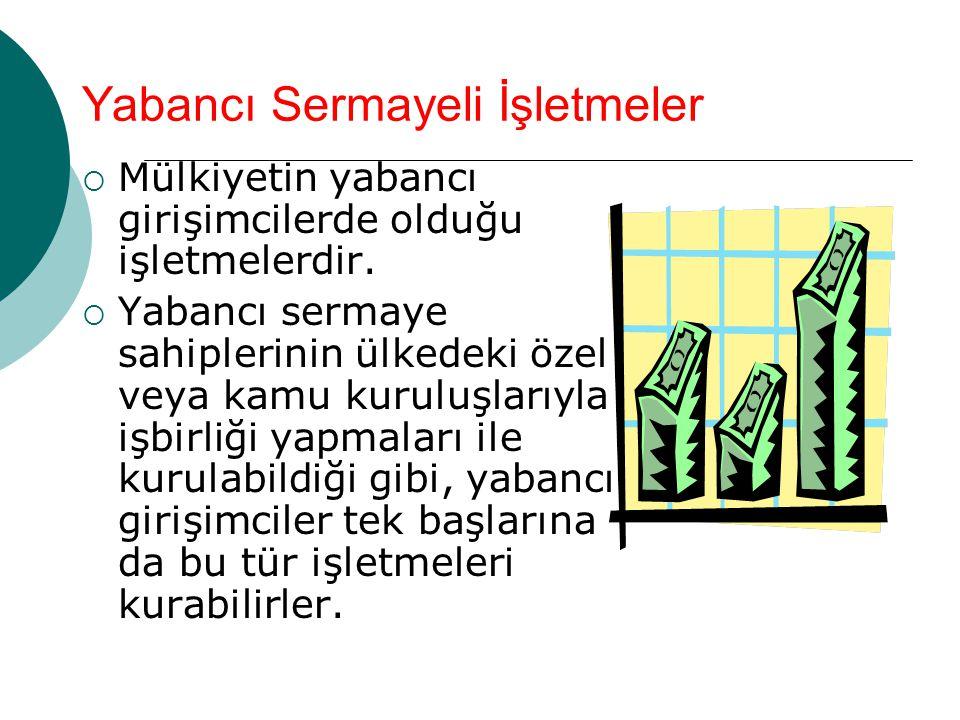 Yabancı Sermayeli İşletmeler  Mülkiyetin yabancı girişimcilerde olduğu işletmelerdir.