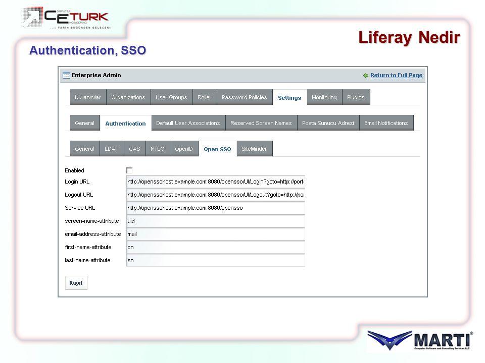 Liferay Nedir Authentication, SSO