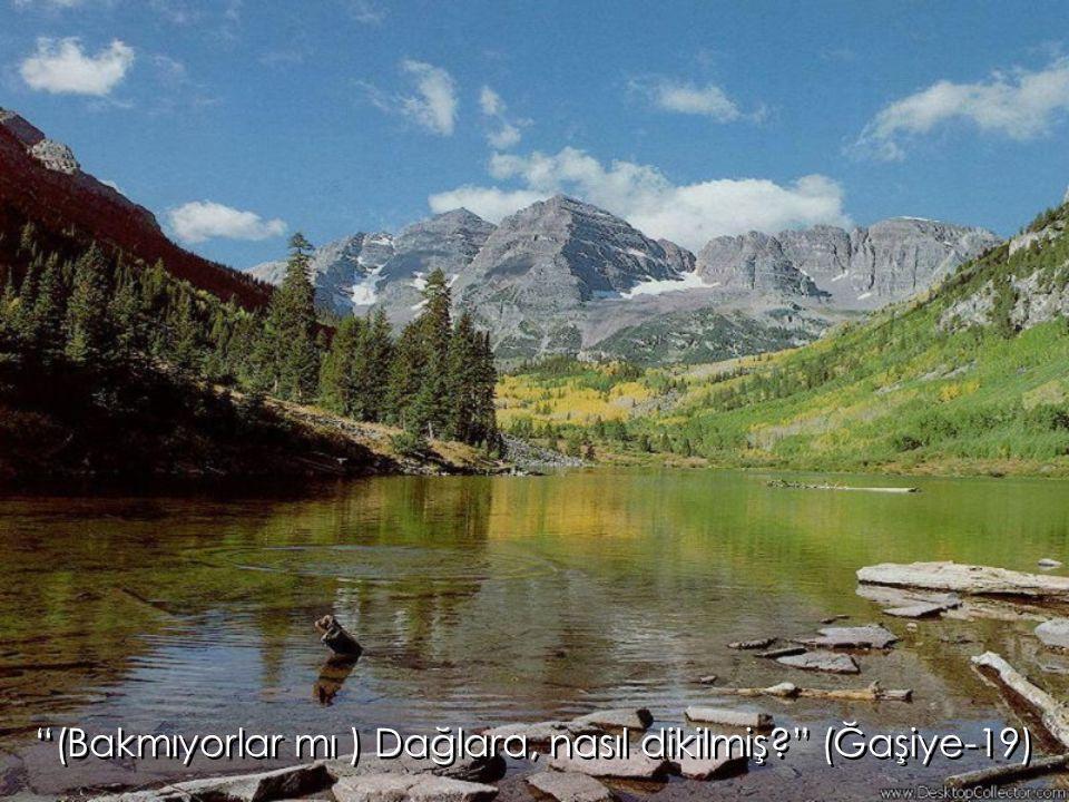 """""""(Bakmıyorlar mı ) Dağlara, nasıl dikilmiş?"""" (Ğaşiye-19)"""