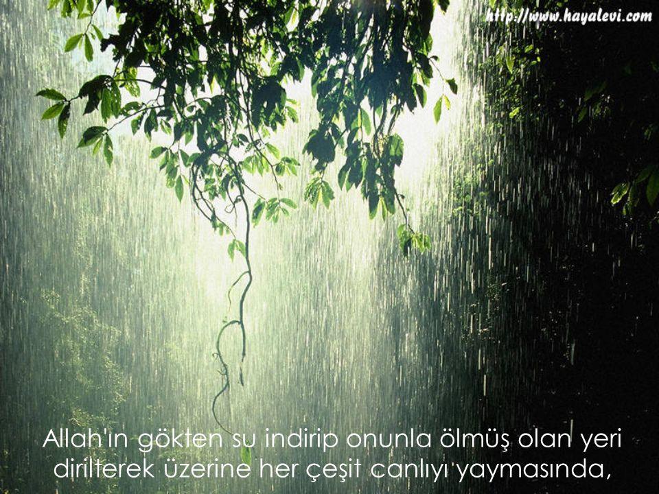 Allah'ın gökten su indirip onunla ölmüş olan yeri dirilterek üzerine her çeşit canlıyı yaymasında,