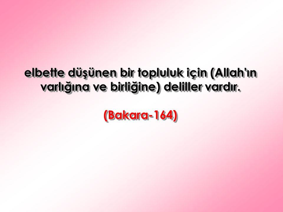 elbette düşünen bir topluluk için (Allah'ın varlığına ve birliğine) deliller vardır. (Bakara-164) (Bakara-164)
