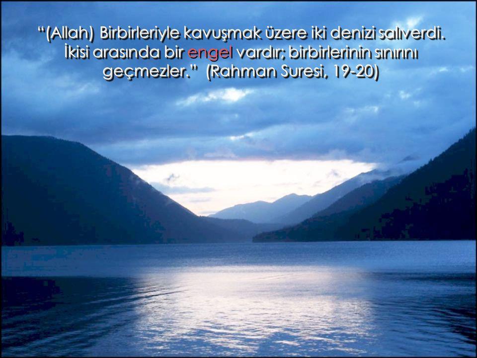 """""""(Allah) Birbirleriyle kavuşmak üzere iki denizi salıverdi. İkisi arasında bir vardır; birbirlerinin sınırını geçmezler."""" (Rahman Suresi, 19-20) """"(All"""