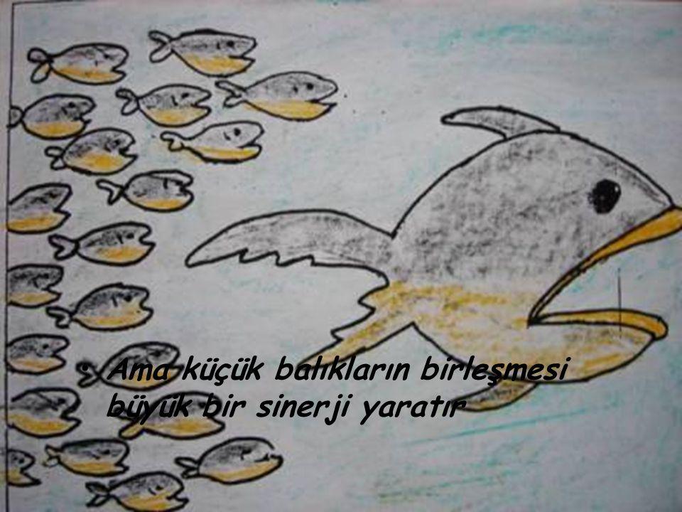 •A•Ama küçük balıkların birleşmesi büyük bir sinerji yaratır