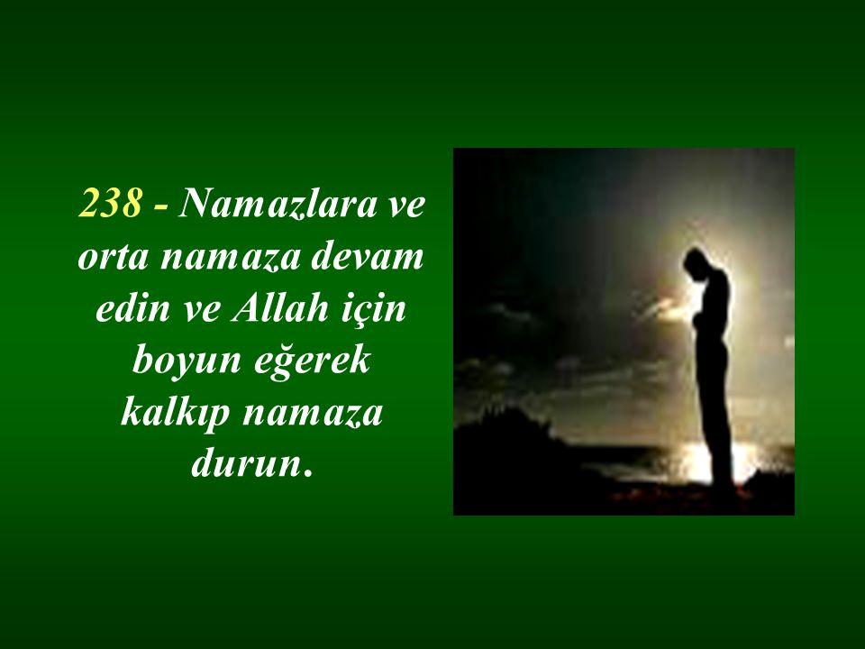 238 - Namazlara ve orta namaza devam edin ve Allah için boyun eğerek kalkıp namaza durun.