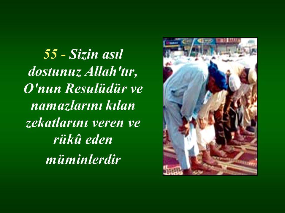 55 - Sizin asıl dostunuz Allah tır, O nun Resulüdür ve namazlarını kılan zekatlarını veren ve rükû eden müminlerdir