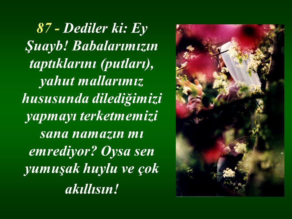 87 - Dediler ki: Ey Şuayb.