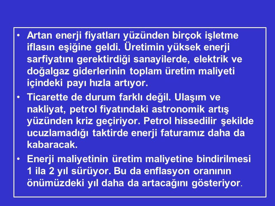 •Koç Üniversitesi Öğretim Görevlisi Prof.Dr.