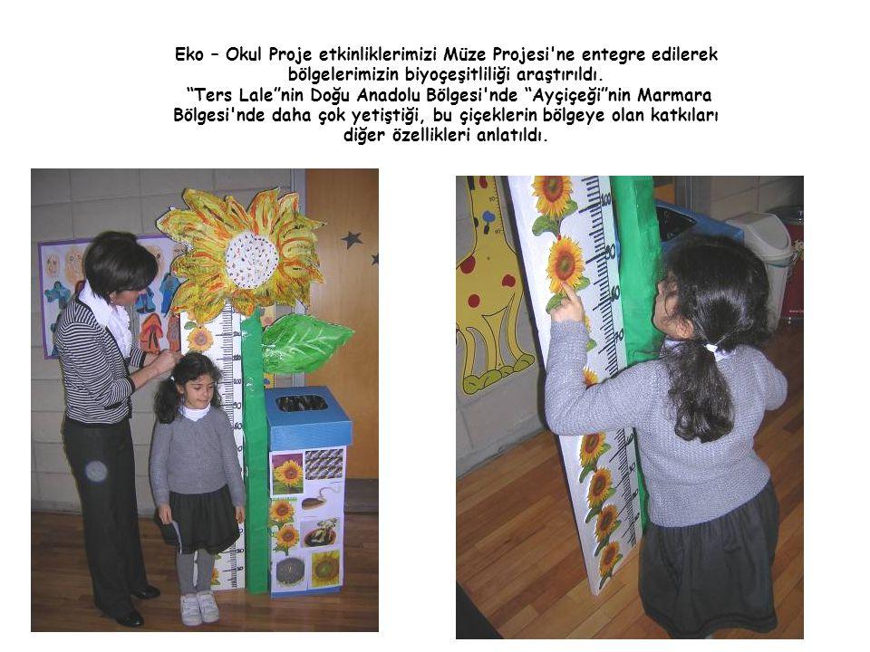 """Eko – Okul Proje etkinliklerimizi Müze Projesi'ne entegre edilerek bölgelerimizin biyoçeşitliliği araştırıldı. """"Ters Lale""""nin Doğu Anadolu Bölgesi'nde"""