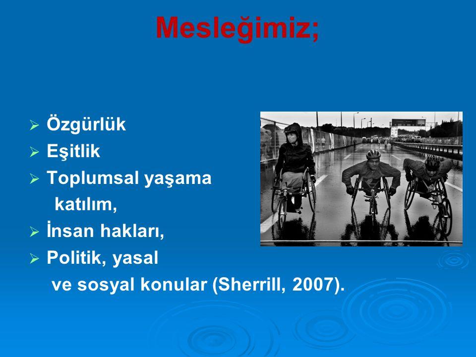 Mesleğimiz;   Özgürlük   Eşitlik   Toplumsal yaşama katılım,   İnsan hakları,   Politik, yasal ve sosyal konular (Sherrill, 2007).
