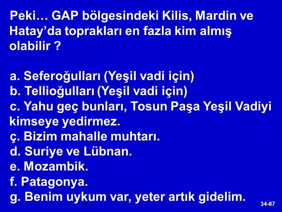 34-87 Peki… GAP bölgesindeki Kilis, Mardin ve Hatay'da toprakları en fazla kim almış olabilir ? a. Seferoğulları (Yeşil vadi için) b. Tellioğulları (Y