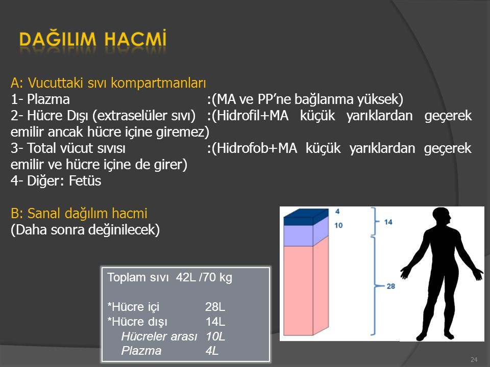 Toplam sıvı 42L /70 kg *Hücre içi 28L *Hücre dışı 14L Hücreler arası 10L Plazma 4L A: Vucuttaki sıvı kompartmanları 1- Plazma :(MA ve PP'ne bağlanma yüksek) 2- Hücre Dışı (extraselüler sıvı) :(Hidrofil+MA küçük yarıklardan geçerek emilir ancak hücre içine giremez) 3- Total vücut sıvısı:(Hidrofob+MA küçük yarıklardan geçerek emilir ve hücre içine de girer) 4- Diğer: Fetüs B: Sanal dağılım hacmi (Daha sonra değinilecek) 24